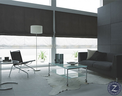 windows-blinds-roman-5